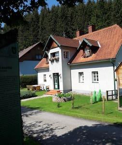 Apartment im Drahtzughaus, EG rechts