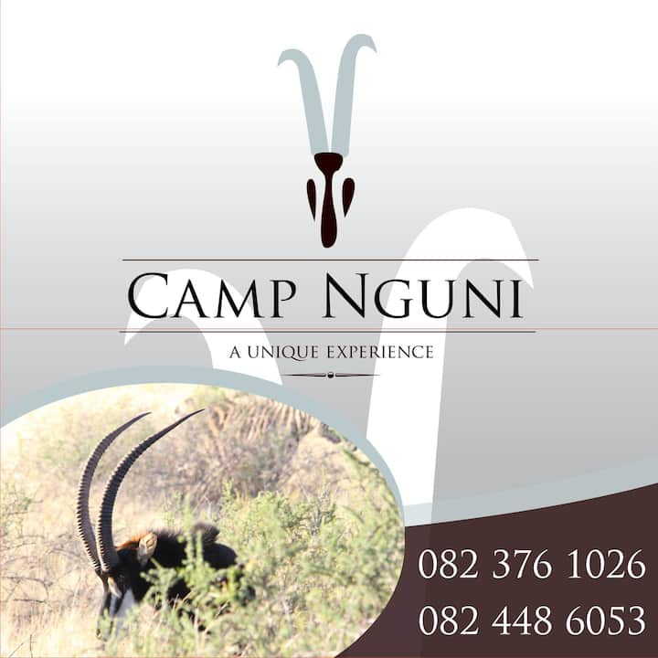 Camp Nguni Lodge