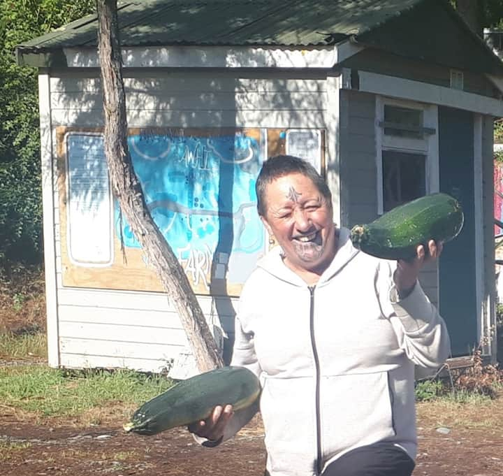 Unique farm stay - learn about Maori culture