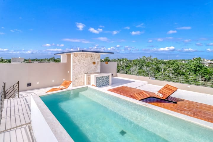 Modern penthouse in secluded area w/ shared common area, private rooftop, & pool