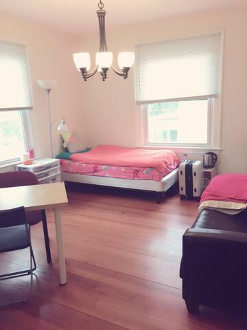1 Bedroom Brookline near T station - Brookline - House