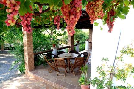 "Romantic farmhouse ""La Gavia"""