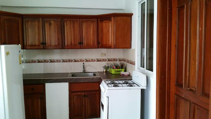 Apartamentos sanchez 264 -victor - Santo Domingo - Apartment