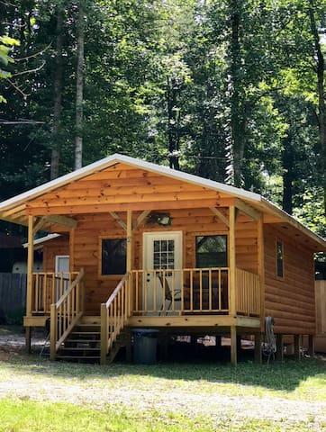 Cozy Mountain Cabin!