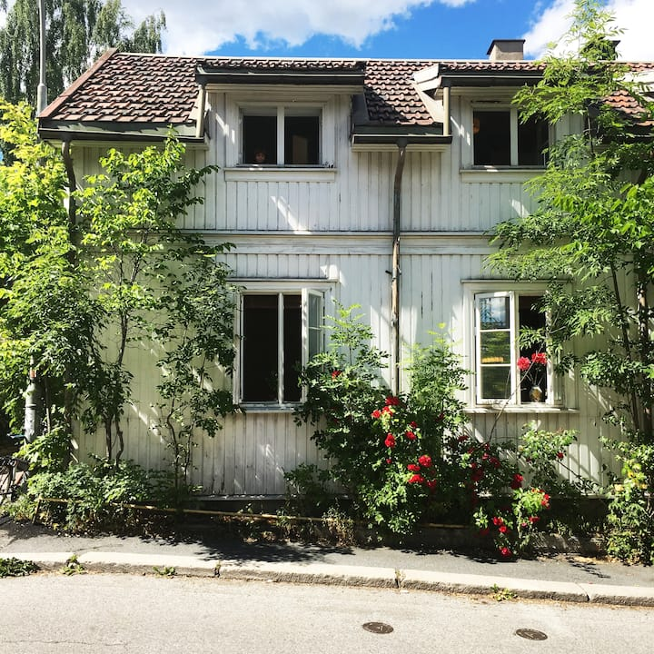Old, charming house close to the city center