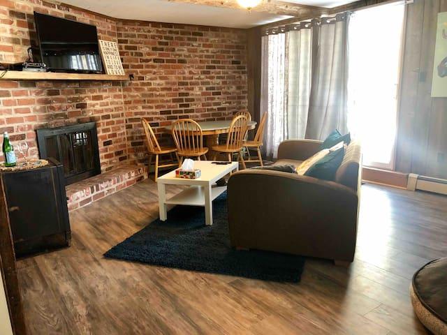 Charming cozy convenient dog friendly apartment