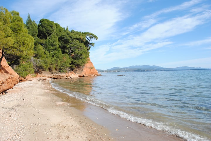 Between the sea and the pine forest