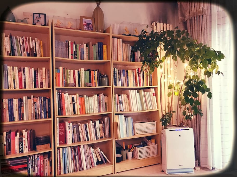 books in the living room 藏书