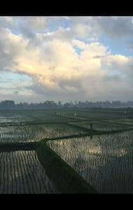 Private Room with Rice Field View - Ubud