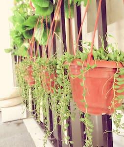 限量低价5晚松江大学城大学生布置的环境优美带阳台学生友好型别墅 - Haus