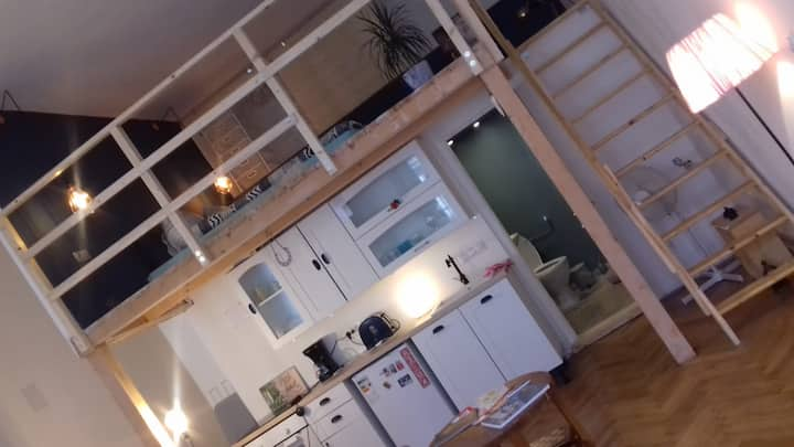 Stylish Loft Apartment in Old Downtown Brasov