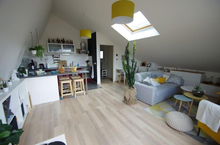 Appartement cosy et moderne 60m²