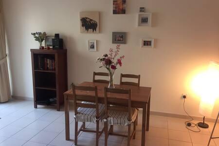Beautiful Fully Furnished 1 Bedroom Apartment - Dubai
