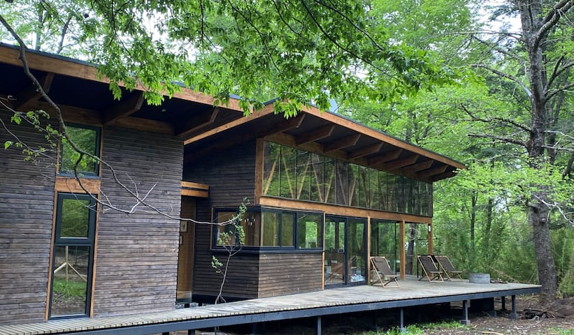 New Mountain residence in native forest