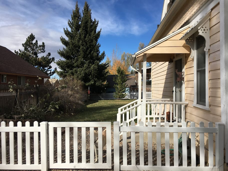 Large fenced yard in safe neighborhood.  Suitable for dogs and kids.