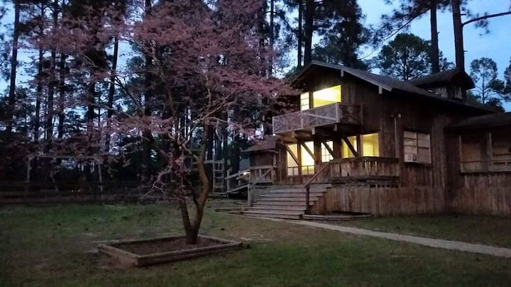 Redbud Cabin at Tall Timbers Retreat. Sleeps 18!