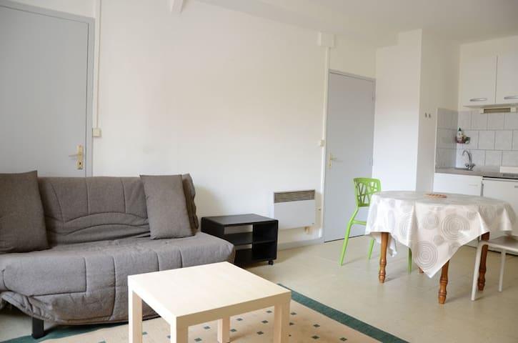 Appartement au calme plein centre ville - Saint-Palais