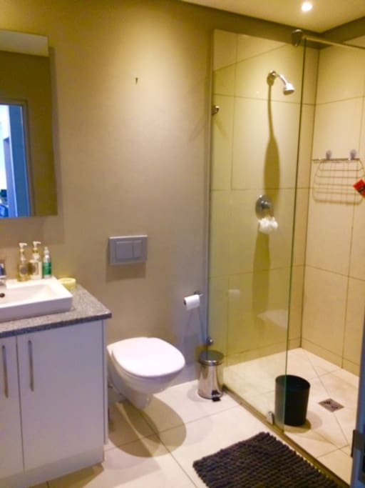 Bathroom with a shower and heated towel rails - shampoos and conditioners, soaps