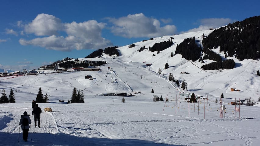 Apartment B Seiser Alm - Skiing and hiking