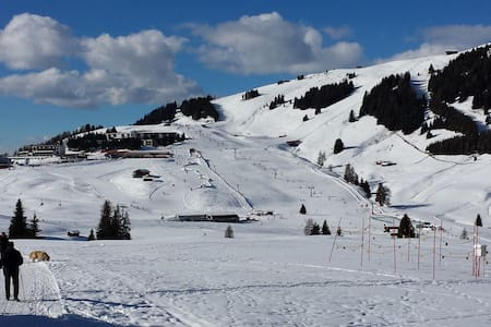 Apartment B Seiser Alm - Skiing and hiking - Province of Bolzano - South Tyrol