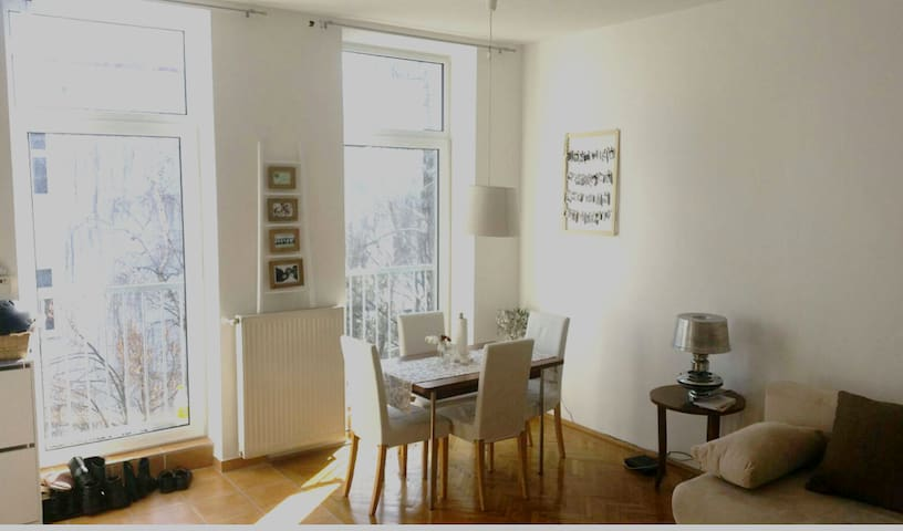 -Sunny and super cosy apartment in Vienna-