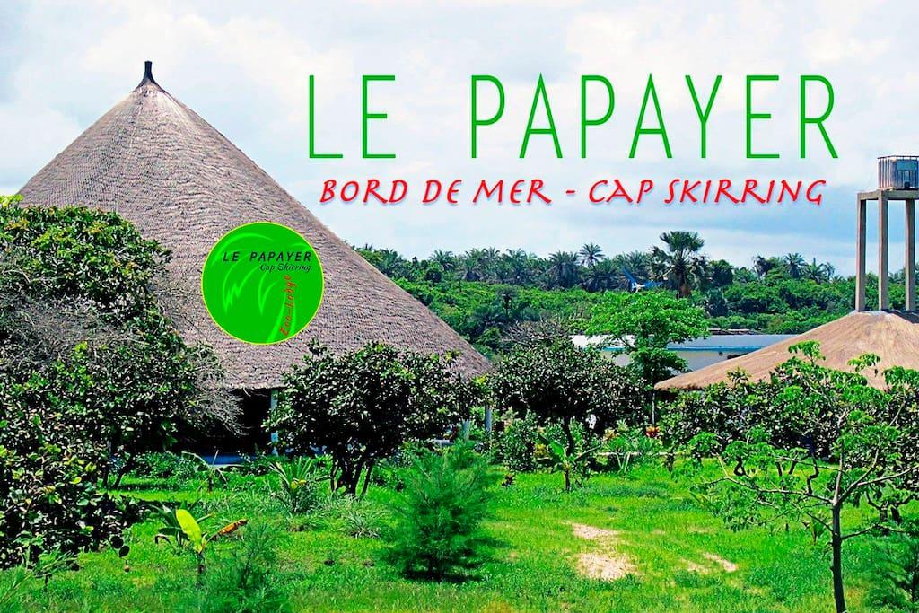 Vue générale du site Le Papayer. Jardin d'un hectare entre la mer et les rizières