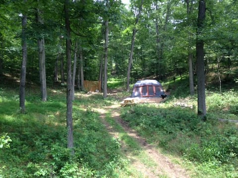 Hidden Meadow, Glamping  at the Distillery