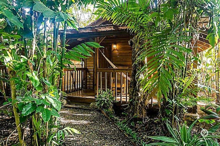 Rainforest Cabin at Brewery/Lodge near Lake Yojoa