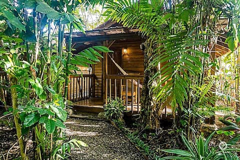 Rainforest Cabin at Brewery/Lodge near Lake Yojoa