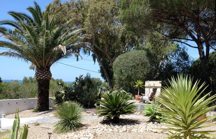 Fab modern garden (Website hidden by Airbnb) views.Natural park