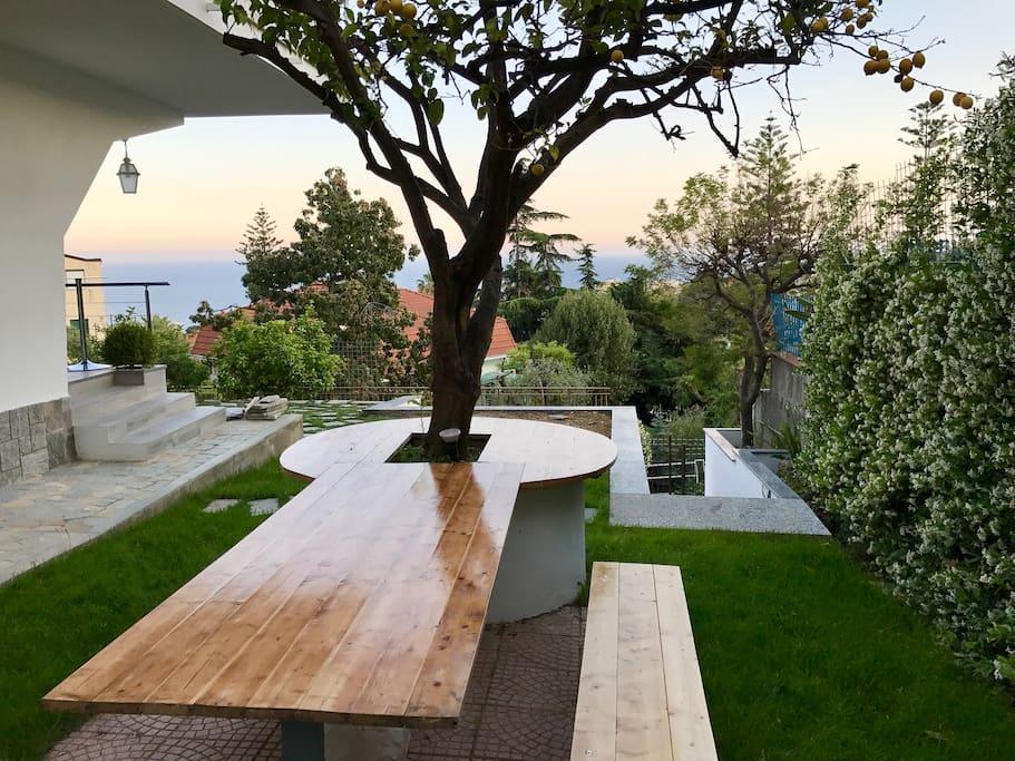 The lemon tree table at sunset