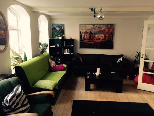 Cozy sofas in great house in the city center - Aalborg - Apartment