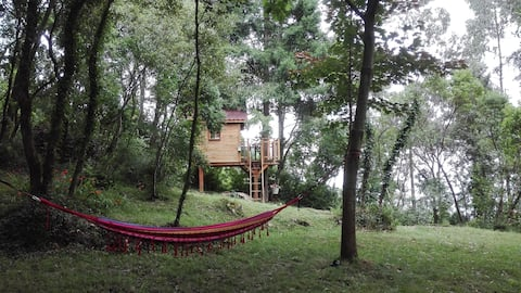 La casita del bosque