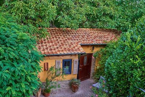 Whole garden finca at Biggi's B&B, Tiny House