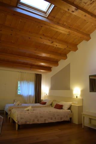 LOFT ✴️1 letto matrimoniale o 2 letti singoli ✴️1 divano letto ✴️angolo cottura ✴️bagno privato ✴️una piccola terrazza che si affaccia sulle montagne!