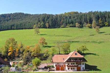 Comfy Apartment in Salmensbach near River