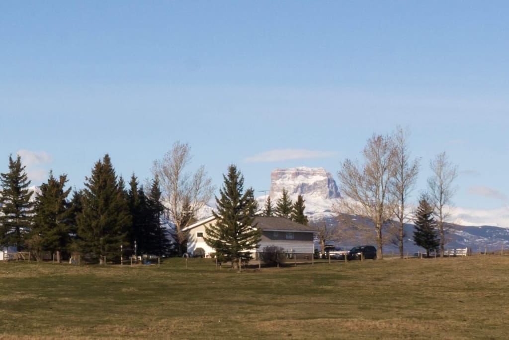 Old Chief in early spring.  Photo courtesy of Stephanie Froelich photography
