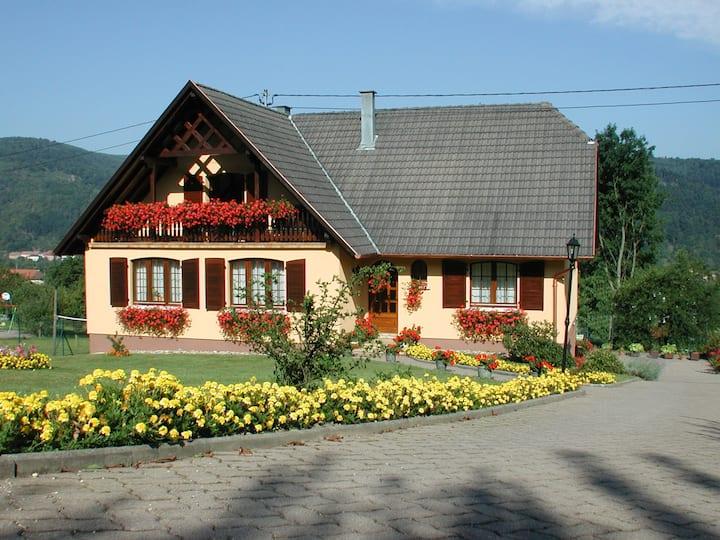 Le gîte du grand charme à Russ en Alsace