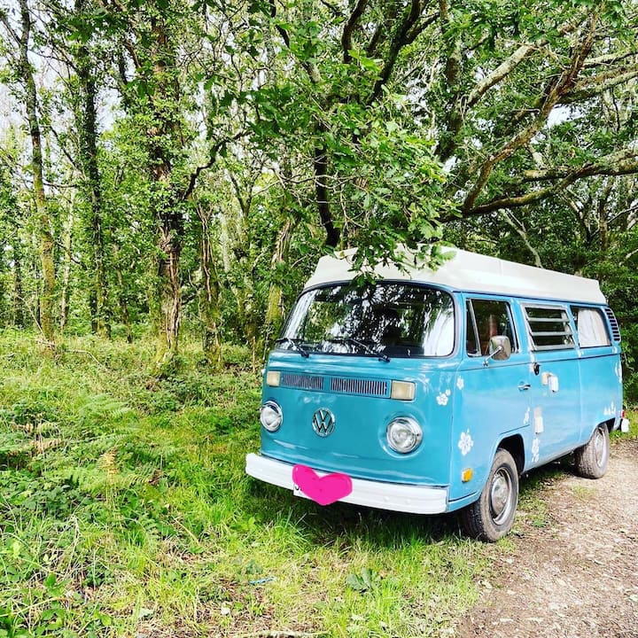 1976 VW T2 Campervan - The Beautiful Miss Blue