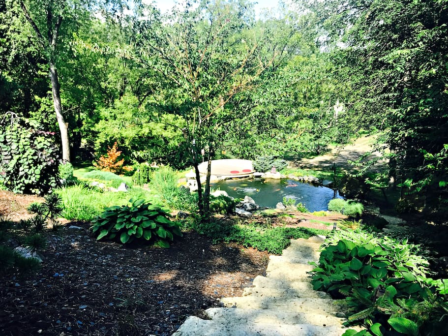 welcome to our autumn season here at the koi whisperer sanctuary japanese gardens - Japanese Koi Garden