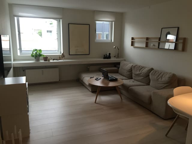 2-bedroom flat near essential tourist attactions - Aarhus - Pis