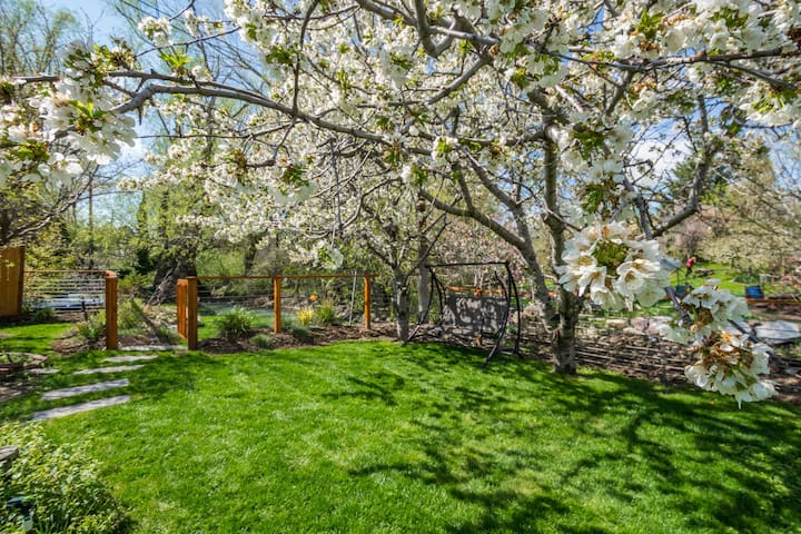 Spacious Newly Renovated Creekside MIL! - Millcreek - Huis