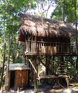 Rainforest Tree House - Kulai - Rumah
