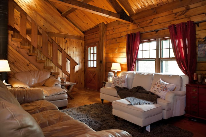 Cherry Blossom Cabin, DC! - Cheverly  - House