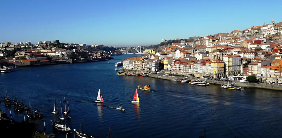 Cozy studio with amazing view over Porto