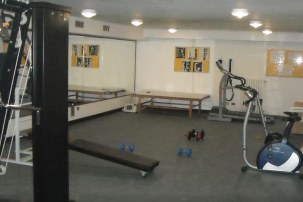 Palestra (Gym)