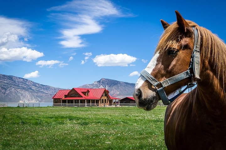 Red Roof Ranch