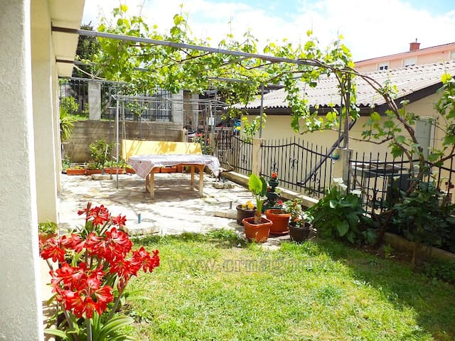 Apartment with 2 bedrooms, balcony, yard - Stari Bar - Apartment