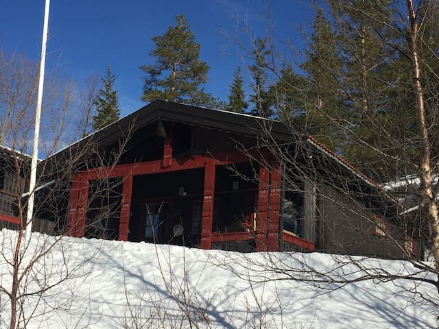 Great cabin in the mountain of Fagerfjell