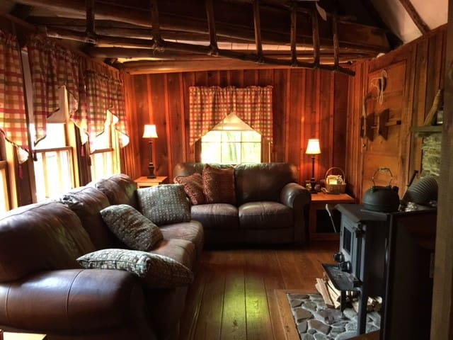 Cozy Log Cabin off Blue Ridge Pkwy - Big Island - Kulübe